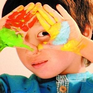 颜料游戏/装饰树套餐2选1